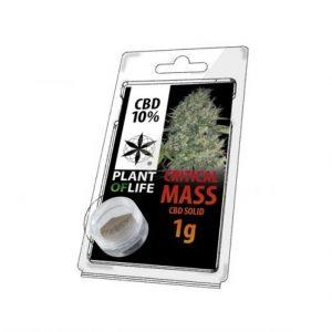CBD Marketplace CBD Hash Solide 10% Critical Mass 1g