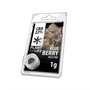 CBD Marketplace Jelly Hash CBD 22% Blueberry 1g