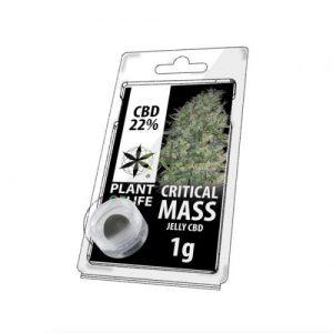 CBD Marketplace Jelly hash CBD 22% Critical Mass 1g