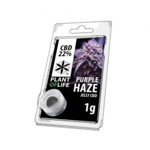 CBD Marketplace Jelly Hash CBD 22% Purple Haze 1g