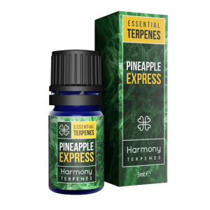 CBD Marketplace Terpene Pineapple Express CBD