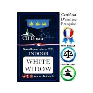 CBD Marketplace Fleur CBD White widow Indoor