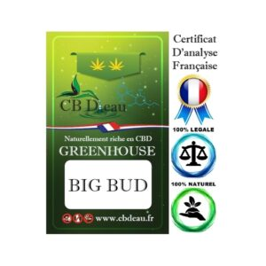 CBD Marketplace Fleur CBD Big Bud Greenhouse