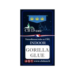 CBD Marketplace Fleur CBD Gorilla Glue Indoor