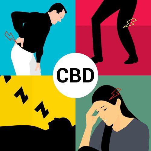 L'huile de CBD soulage l'anxiété, les maux de dos, l'arthrose, les troubles du sommeil ou les troubles menstruels   CBD Marketplace