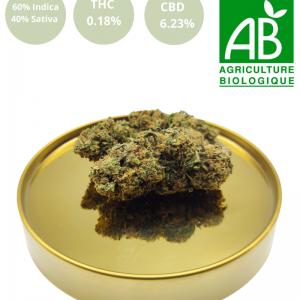 Gelato Bio CBD | Origine CBD | CBD Marketplace