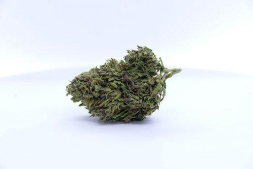 Fleurs de CBD Eden | Clorofilla | CBD Marketplace