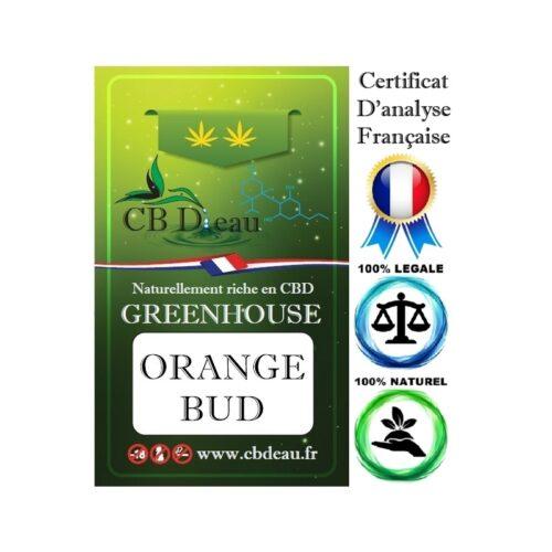 Orange Bud CBD Greenhouse | CBD'Eau | CBD Marketplace
