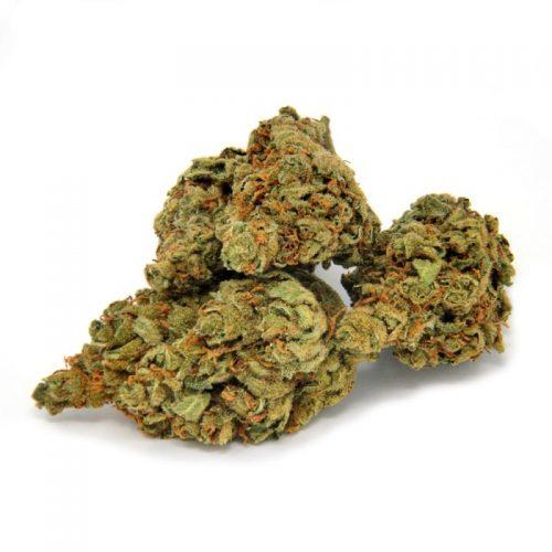 Orange Bud CBD Greenhouse | CBD Marketplace