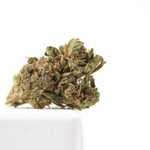 Fleur de CBD Fragolina   cbd pure extract   CBD Marketplace