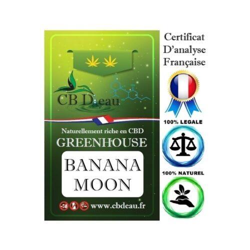 Fleur de Banana Moon CBD | CBD Marketplace