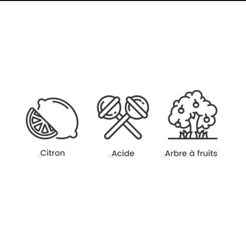 Fleur Française CBD Therapy lemon | Saveurs x Hemeka® | CBD Marketplace