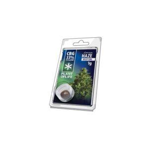 Hash CBG 33% Amnésia Haze 1g | Plant Of Life | CBD Marketplace