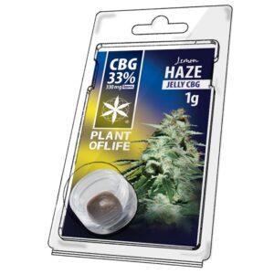Hash CBG 33% Lemon Haze 1g | Plant Of Life | CBD Marketplace