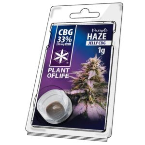 Hash CBG 33% Purple Haze 1g | Plant Of Life | CBD Marketplace