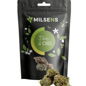 Amnésia CBD | Milsens CBD | CBD Marketplace