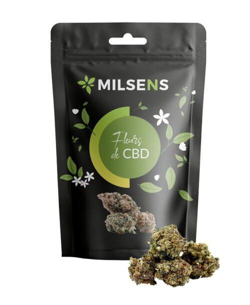 Gelato CBD | Milsens CBD | CBD Marketplace