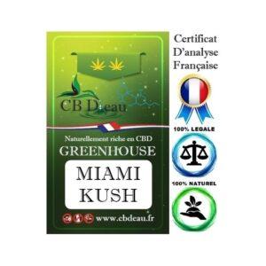 Miami Kush Fleur de CBD | CBDEau | CBD Marketplace